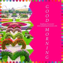 Good Morning_2
